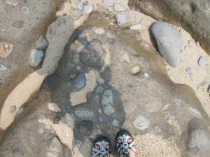 NB20 rocks in lave