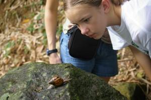 OTT snail