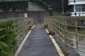 typhoon bridge