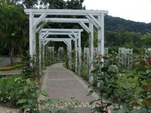 gardens 12