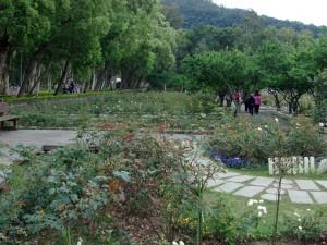 gardens 14