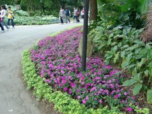 gardens 20