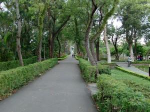 gardens 31