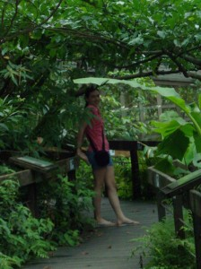 gardens 43