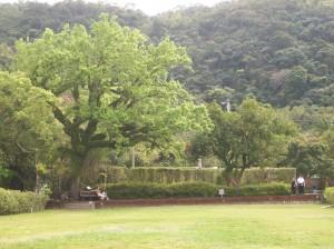 gardens 57