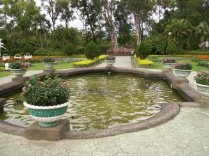 gardens 61
