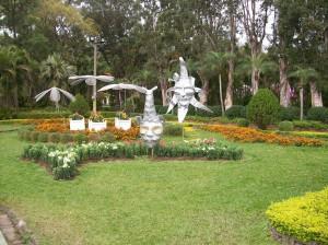 gardens 62