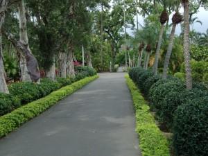gardens 70