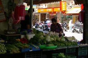 ShiDong 3 veg stand