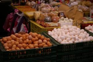 ShiDong 36 egg bins