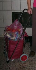 g-cart 1