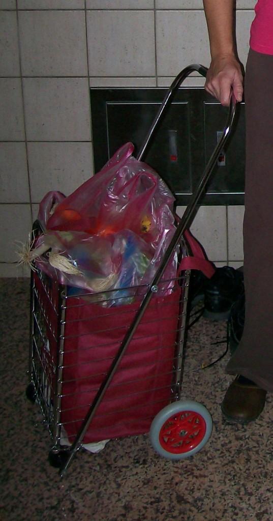 Loaded Granny Cart