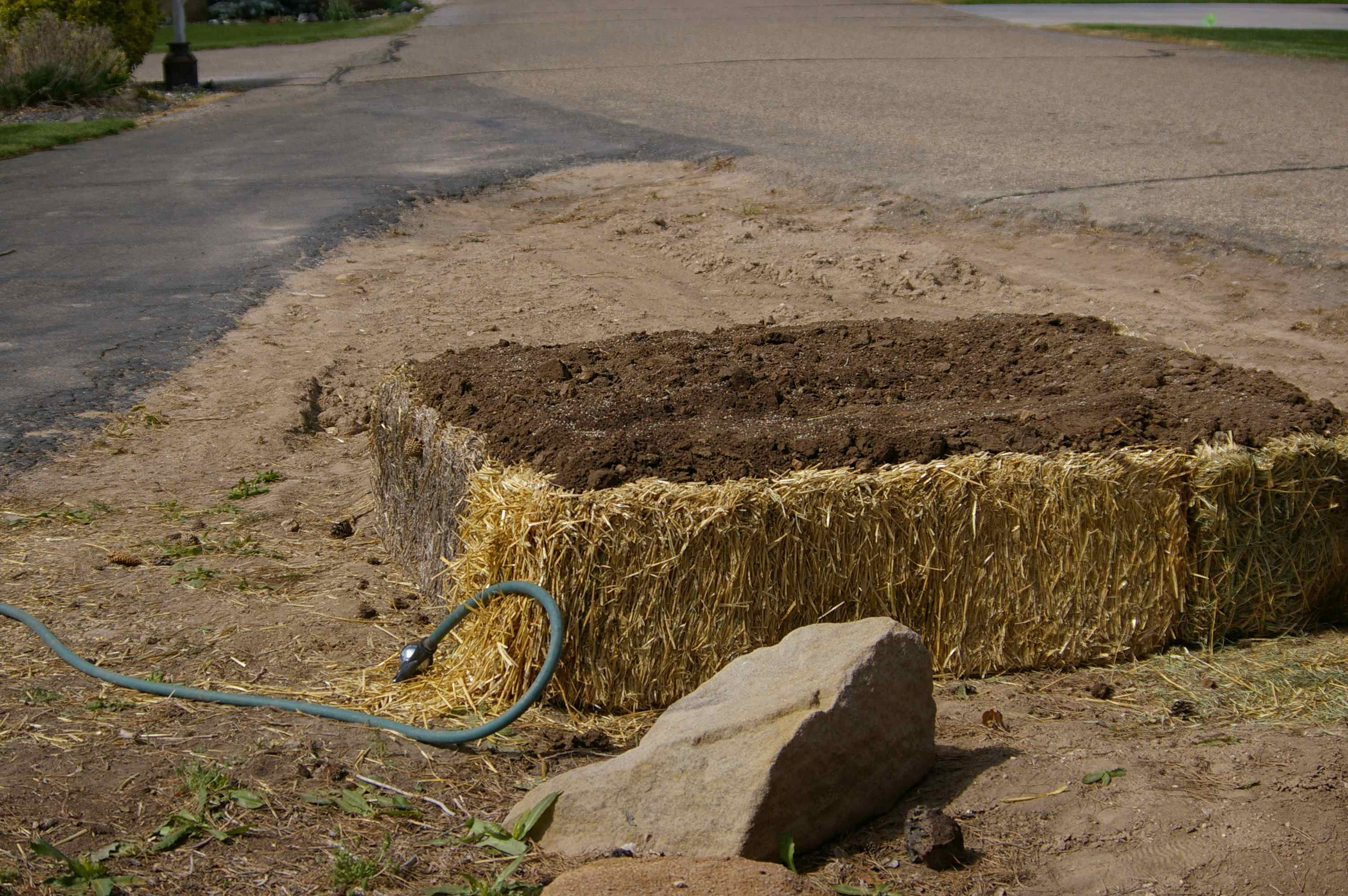 Chronicles of a Straw Bale Garden