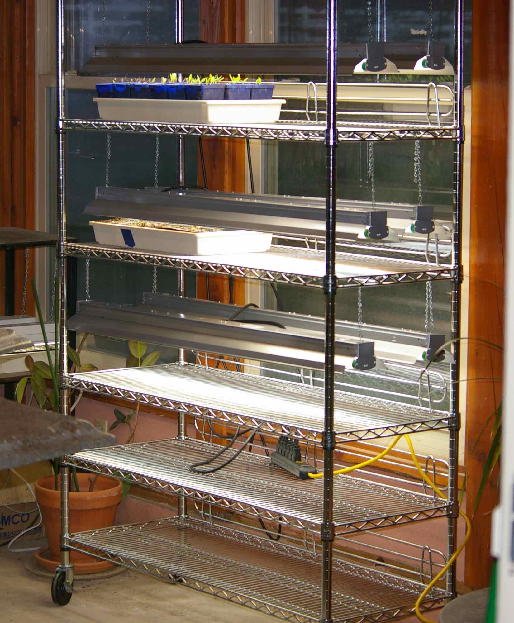 Easy Grow Light Stand For Seedlings Rh Dailyimprovisations Com Led Grow  Light Shelves Led Grow Light