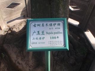 20110412-031659.jpg