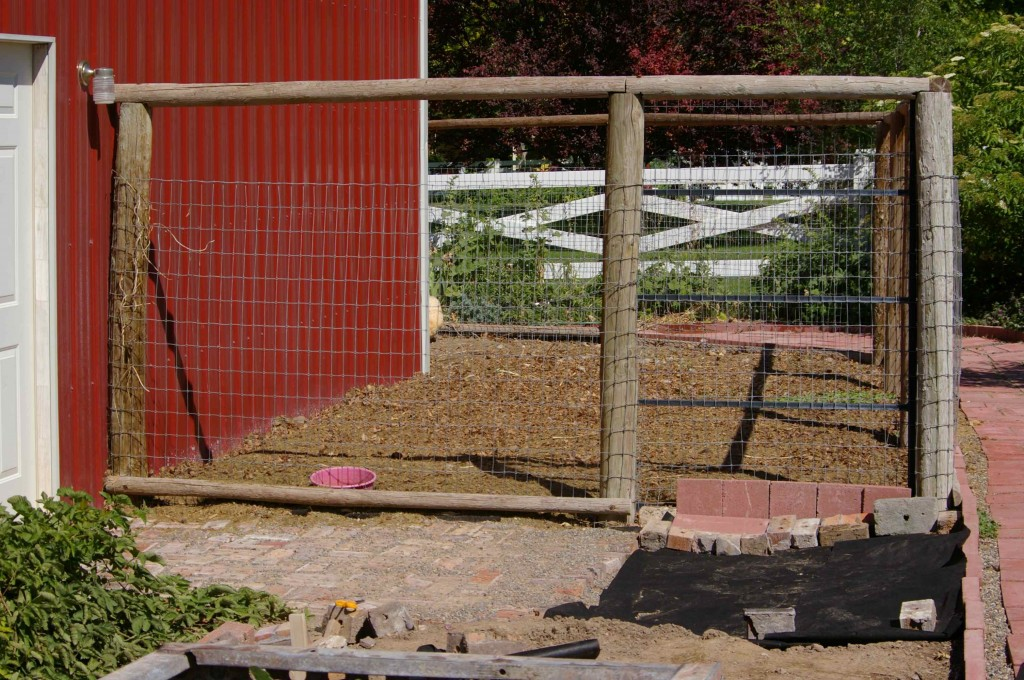 Helpless Female Works on Transforming Chicken Coop into Anti-Fox Chicken Bunker