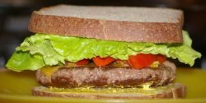 August lettuce on hamburger