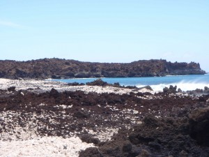 The lava fields along La Perouse Bay in Maui