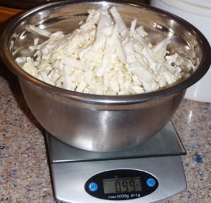 what one pound of shredded cabbage looks like