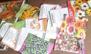 packets of older seeds to test for viability