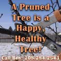 Click to email Ben's Pruning: benspruninganddesign@gmail.com