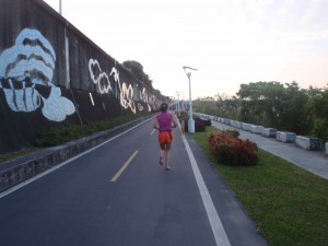 bike path, used by walkers and runners, too; along the Danshui River just north of Dadaocheng Wharf