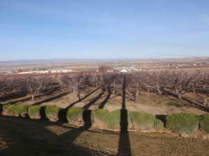 Looking out over the Snake River plain from Ste. Chapelle winery's park area, the opposite way from the race course