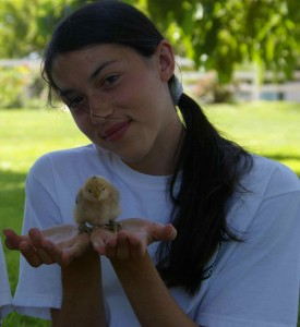 chicks that are held frequently are easier to take care of when they are older, too