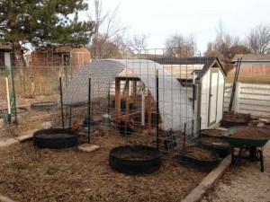 chicken coop full panorama