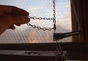 adding a hook to raise the upper section of grow light chain when tomatoes got taller