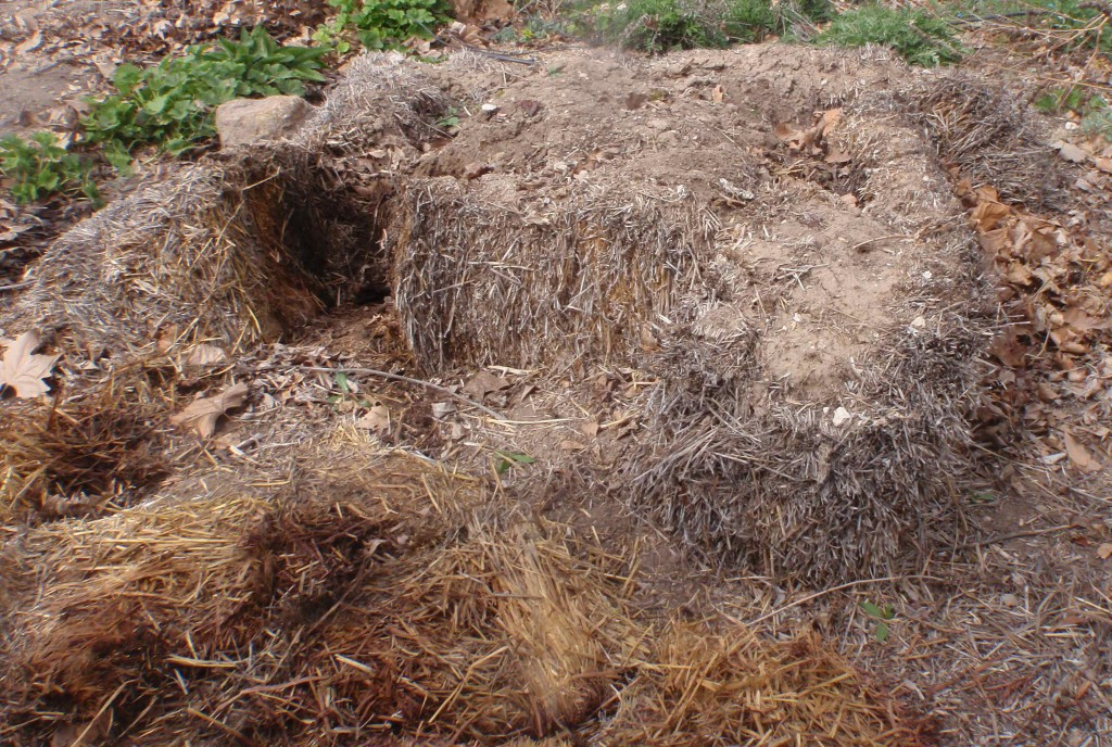 How Well Does a Straw Bale Garden Decompose in the Arid Desert of Southwest Idaho