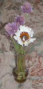 cape daisy blossom in vase with lavender chive flowers