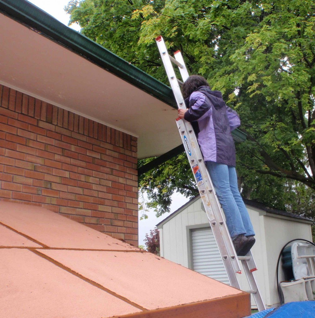 cleaning gutters diy