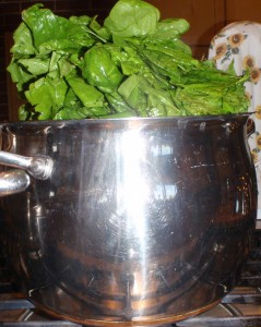stuffing spinach in the pot to maximum capacity