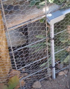 the PVC pipe path on the back or inside of the fence, just before it goes underground again to get past the gate