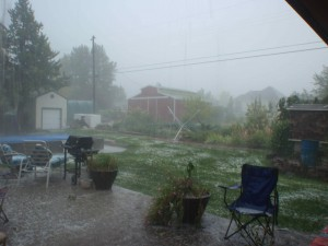 The most spectacular late summer hail storm in my recollection for Nampa, Idaho, did a lot of damage to my garden.