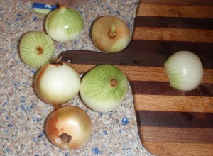 These are 7 of the 8 smaller yellow onions from my garden that I used for this batch of pickles.