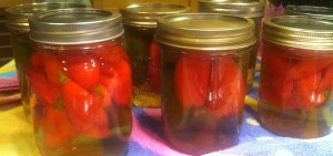 The jalapeño peppers and hot paper lantern peppers have been pickled and processed with water bath canning.