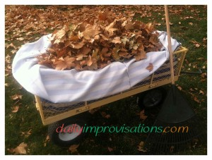 My new reusable custom fitted leaf bag in my garden cart.