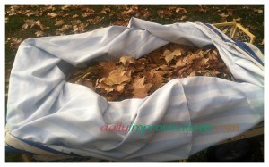 The leaves in the magic reusable leaf bag are already 4 times as many as stay in the plain garden cart.