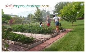 Photos of last summer's garden help me plan for the next growing season.