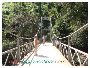 The cement bridge on the way to Nauyaca Waterfalls in Costa Rica can be set to swinging with just a little jumping...