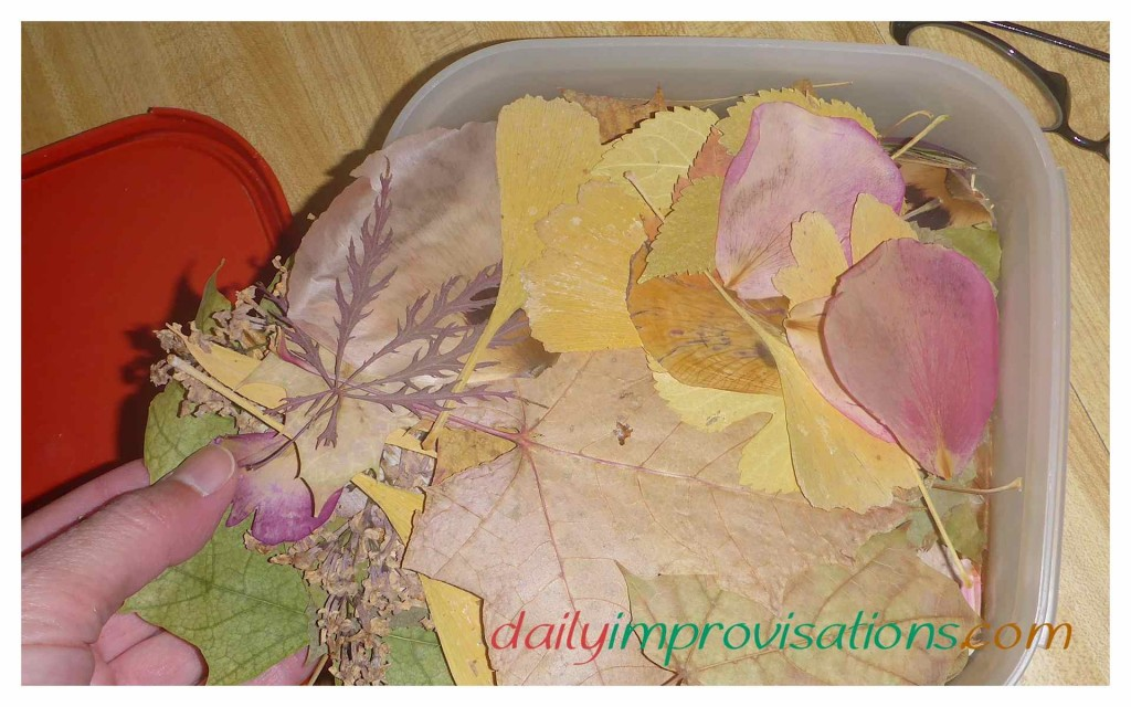 Some of my older kids still keep a stash of dried leaves for potential art projects, such as birthday cards or bookmarks.