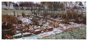 This is what a major section of my garden looks like right now. The ground may be frozen, but I may yet be able to clean up some of the debris before spring planting.