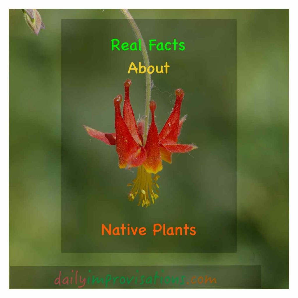 Real Facts About Native Plants