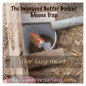The better bucket mouse trap opened to see inside.