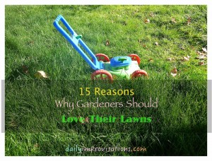 15 Reasons Gardeners Should Love Their Lawns