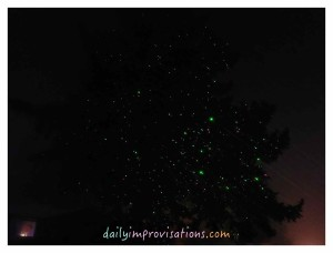 Christmas laser lights shining on an outside tree.