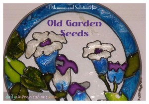 dilemmas and solutions for old garden seed
