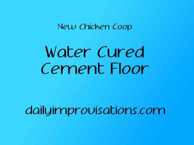 New Chicken Coop Water Cured Cement Floor